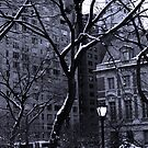 "Central Park Lamppost by Christine ""Xine"" Segalas"