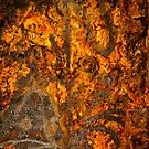 Rusty Abstract by IdahoJim