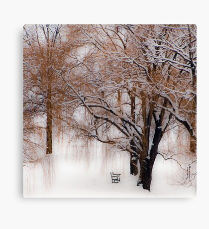 Winter Waits for You Canvas Print