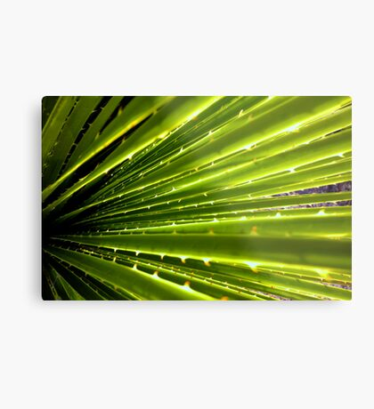 Flare Out Metal Print