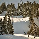 Skiing Mt Baker Washington by Clayton Bruster