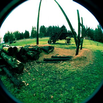 Old Logging Camp and Equipment by claytonbruster