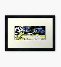 White Bear Framed Print