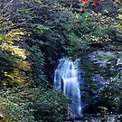 Meigs Fall III  by Gary L   Suddath