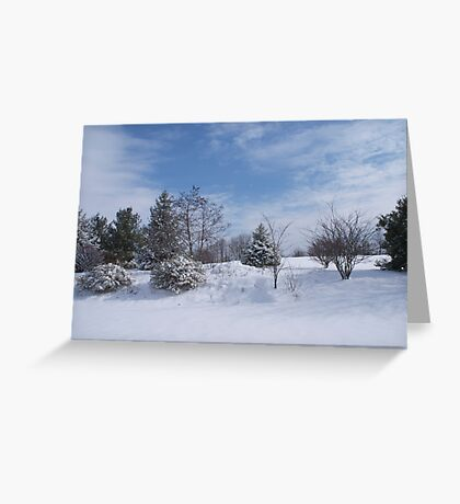 looking for snowmen Greeting Card
