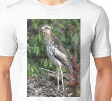Bush Thick-knee Unisex T-Shirt