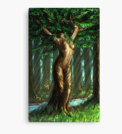 Daphne's Metamorphosis Canvas Print