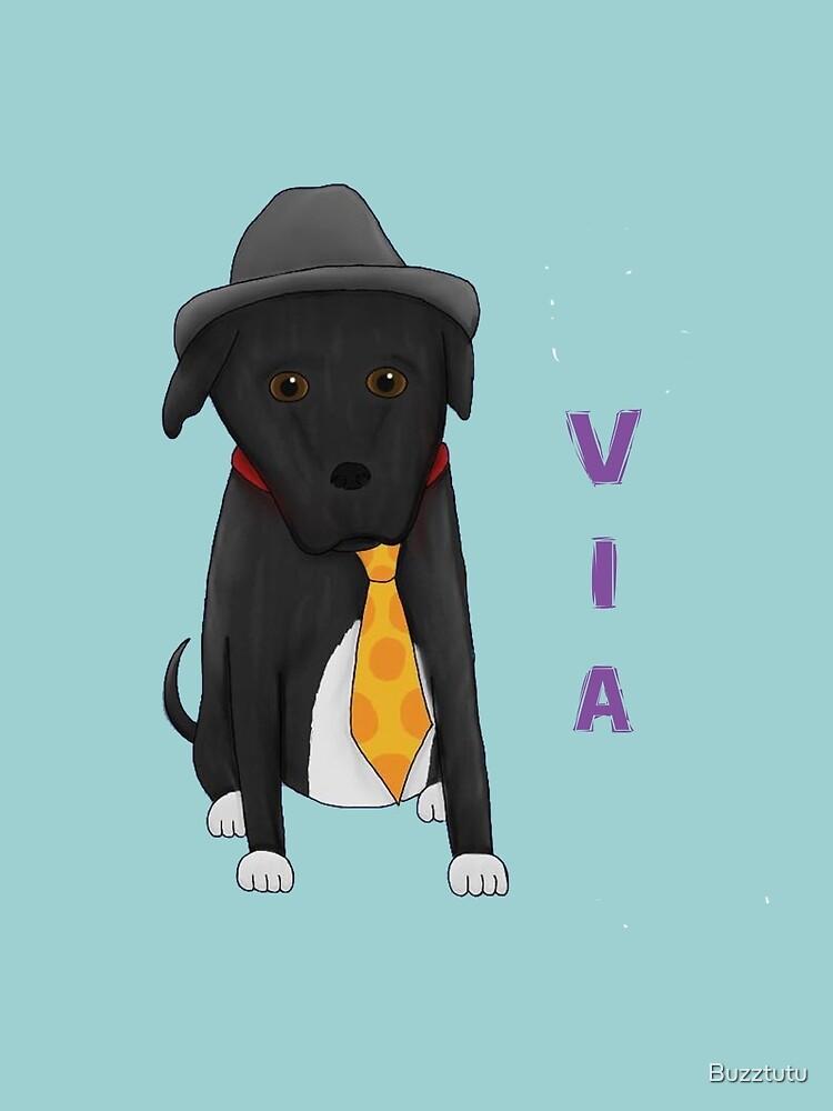 Dressed Up Dog, VIA by Buzztutu