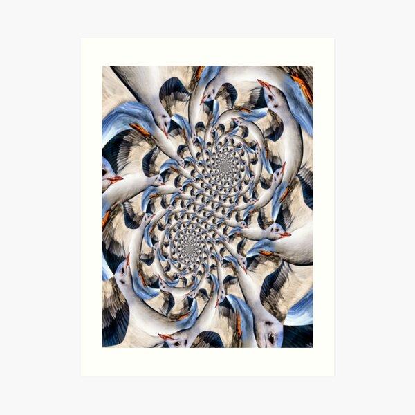 Double Seagull Spirals Art Print