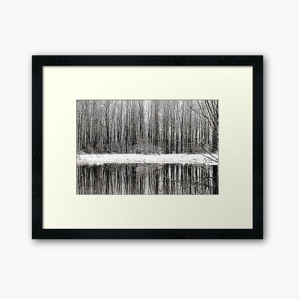 Whites of Winter  Framed Art Print