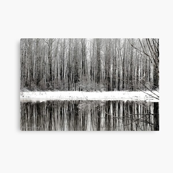 Whites of Winter  Canvas Print