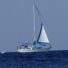 Just Sail Away by Rick Playle