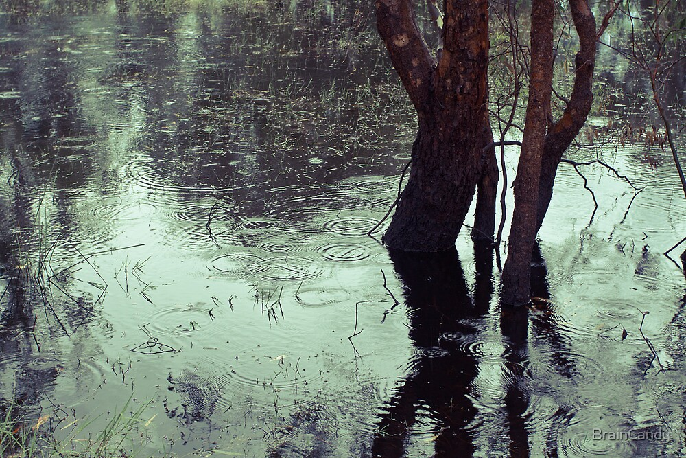 Rains in the King valley 3 by BrainCandy