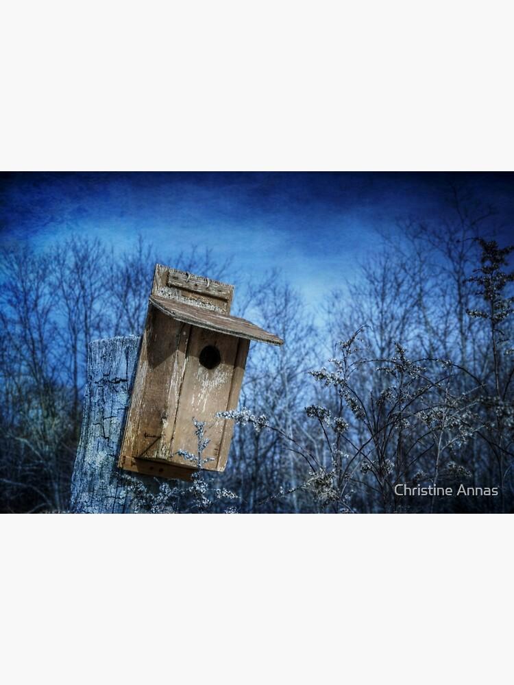 Dream Home by 2Bricks
