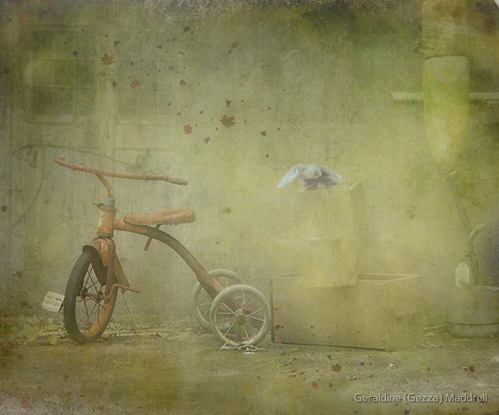 Abandoned But Not Forgotten by Geraldine (Gezza) Maddrell