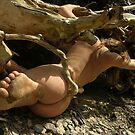 Le pied d'Alice by joseph Angilella AUQUIER