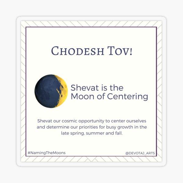 Jewish Planner Sticker: Shevat Transparent Sticker