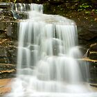 Falling Waters Lower Falls by Diana Nault