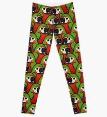 Too Many Birds! - Harlequin Macaw Leggings