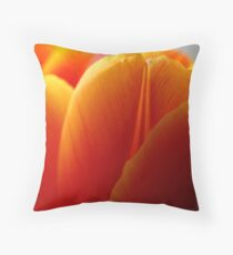 Triple Layer of Orange Throw Pillow