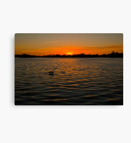 Sunset over the water, opened by David Attenborough Canvas Print