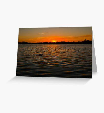 Sunset over the water, opened by David Attenborough Greeting Card