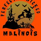 Belgian Malinois in Halloween by ceciliamart