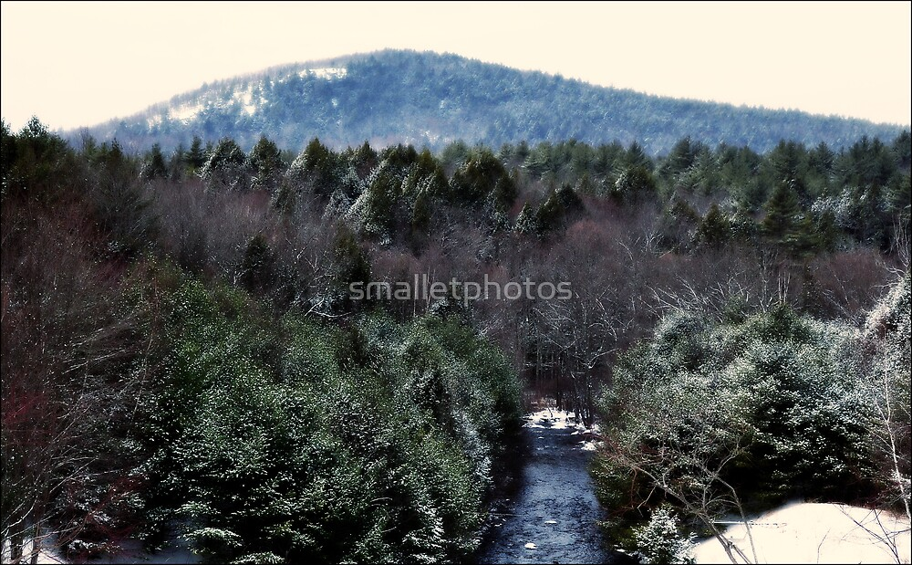 Tully Mountain/Tully Brook by smalletphotos