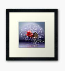 Argonaut Simplistic Framed Print