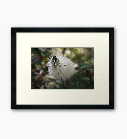 A Different Angle Framed Print