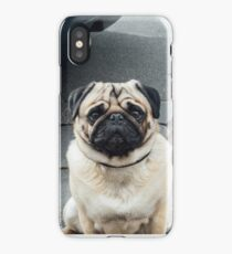 Adorable Pug iPhone Case/Skin
