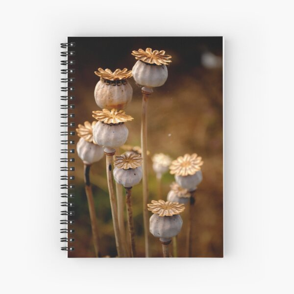 Group of seed pods Spiral Notebook
