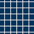 Blue & White Grid Geometric Illusion by EvePenman