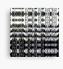 DSCN0034 _GIMP _XnView Canvas Print