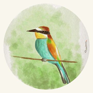 Bee-eater by vicentbeneito