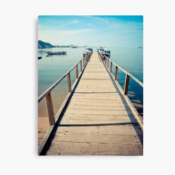 Step towards Komodo Canvas Print