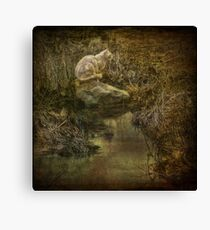 A Kitty for Kira, a Cat for Pat! Canvas Print