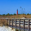 View From The Beach by Deborah  Benoit