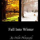 Fall into Winter by Jay White