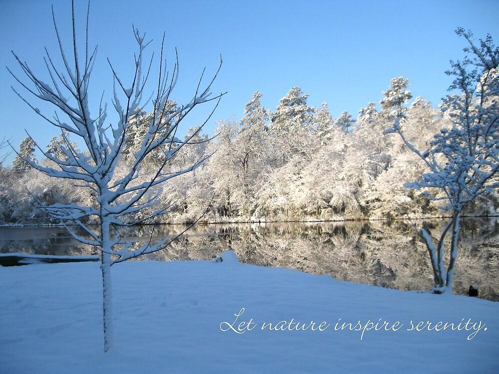 Let nature inspire serenty - a snowscape by Lori Worsencroft