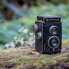 Rolleicord TLR by Keith G. Hawley