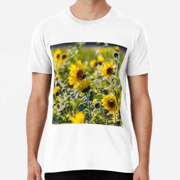 sunflowers Premium T-Shirt