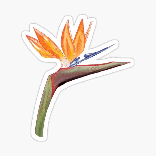 Strelitzia flower Sticker