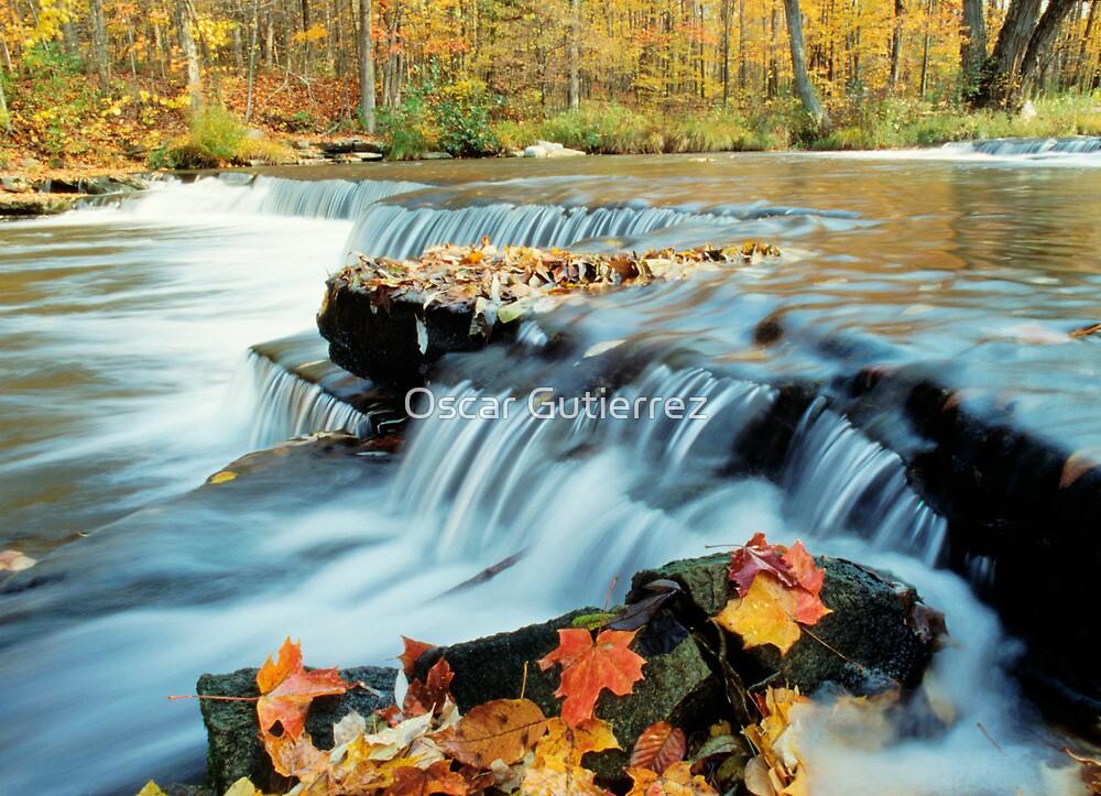 Autumn Cascade by Oscar Gutierrez