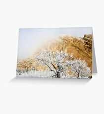 Magic Frost Greeting Card