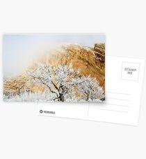 Magic Frost Postcards