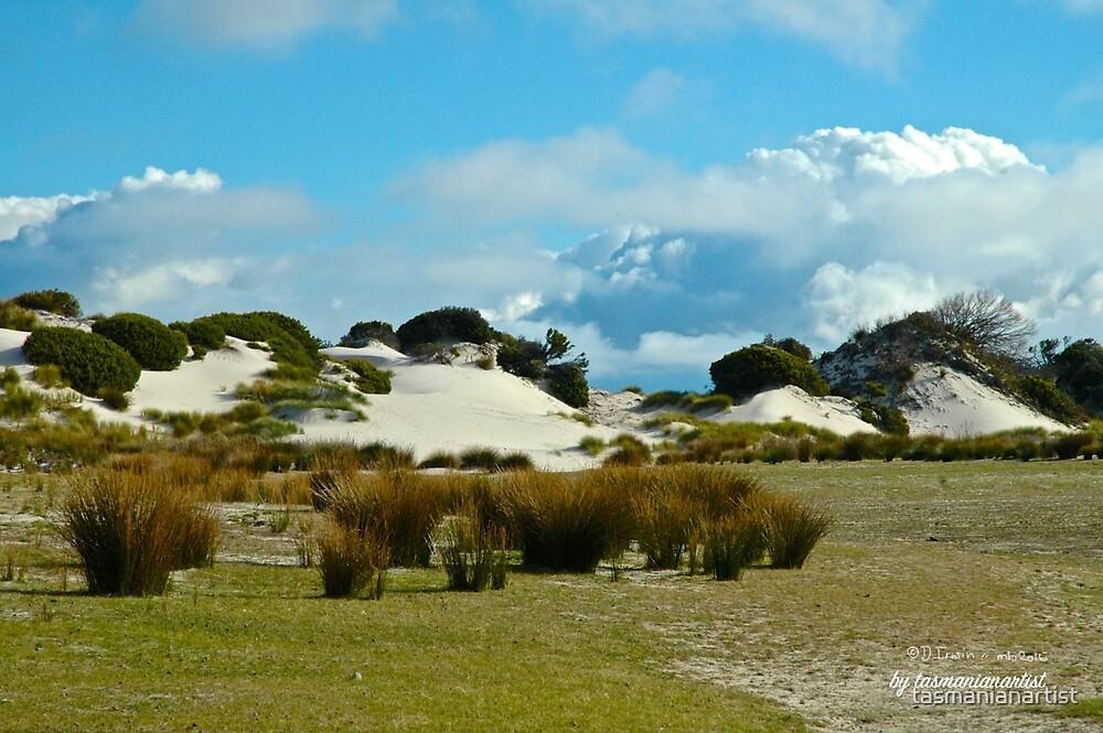 TASMAN PENINSULA ~ Sand Dunes of Lagoon Beach by tasmanianartist by tasmanianartist