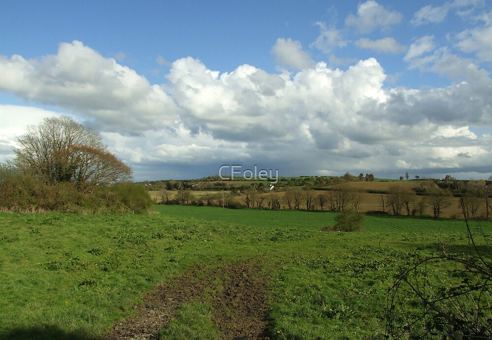 Irish Countryside in Spring by CFoley