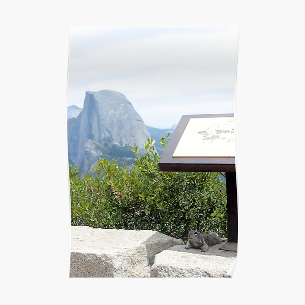 Chillin by Half Dome Poster