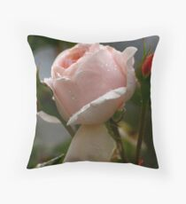 David Austin climber  Throw Pillow